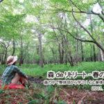 森deリトリート-春の回-~森の中で整体師から学ぶ!心と身体のほぐし方~ (北杜市)